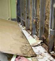 Water Damage Restoration Scottville MI